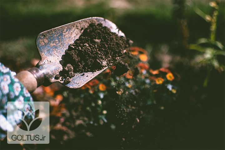 خاک مناسب